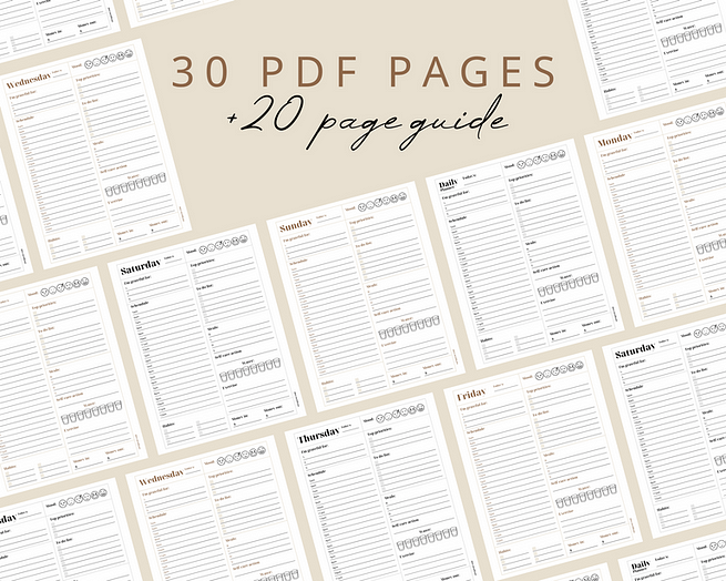 30 PDF pages and 20 page guide